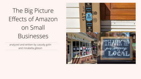Online shopping sites, such as Amazon, are affecting small businesses amid COVID-19