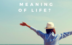 How would you describe the meaning of life?