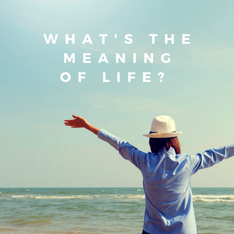 How+would+you+describe+the+meaning+of+life%3F